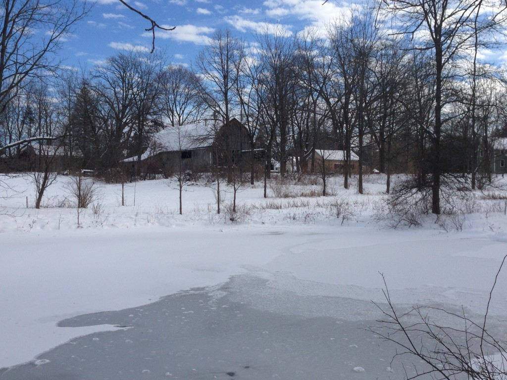 Pond 1-5-14 14